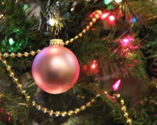 Celebrate Our Savior through Advent & Christmas